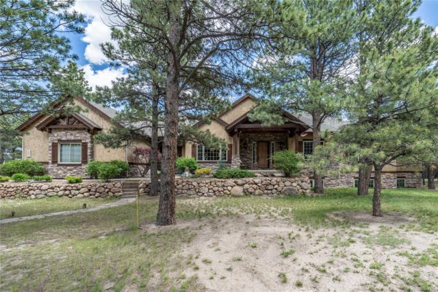 18881 Pagentry Place, Monument, CO 80132 (MLS #3311467) :: 8z Real Estate