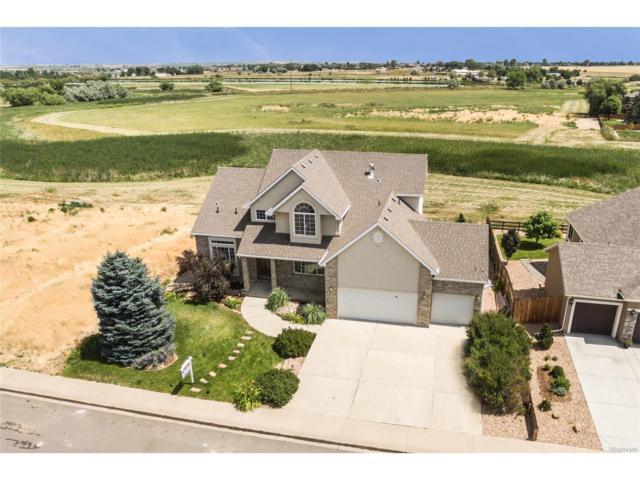 5533 Wetlands Drive, Frederick, CO 80504 (MLS #3313537) :: 8z Real Estate