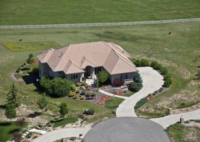9938 Bluestar Drive, Parker, CO 80138 (#3313901) :: The Griffith Home Team