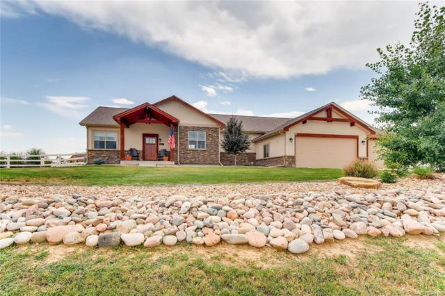 6564 E 162nd Drive, Brighton, CO 80602 (MLS #3318274) :: 8z Real Estate