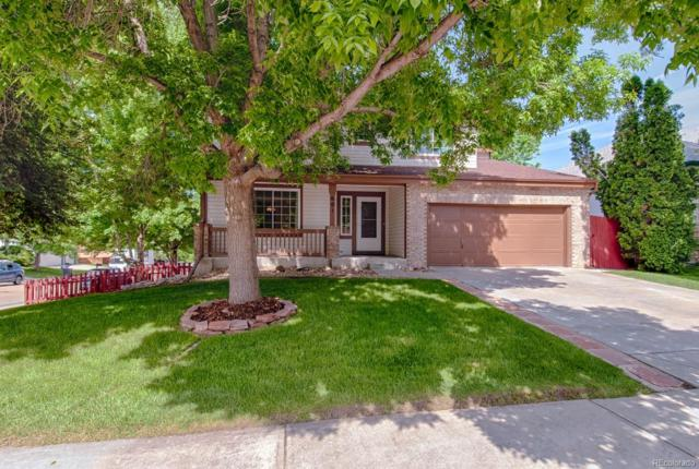 601 Silver Star Court, Longmont, CO 80504 (#3320699) :: The Healey Group