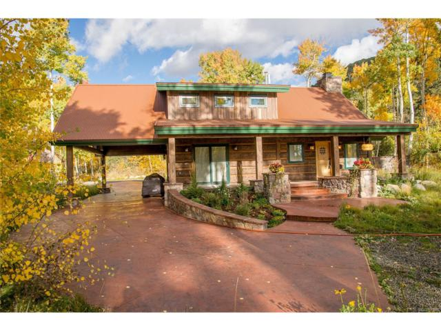 19045 Monarch River Drive, Salida, CO 81201 (MLS #3322304) :: 8z Real Estate