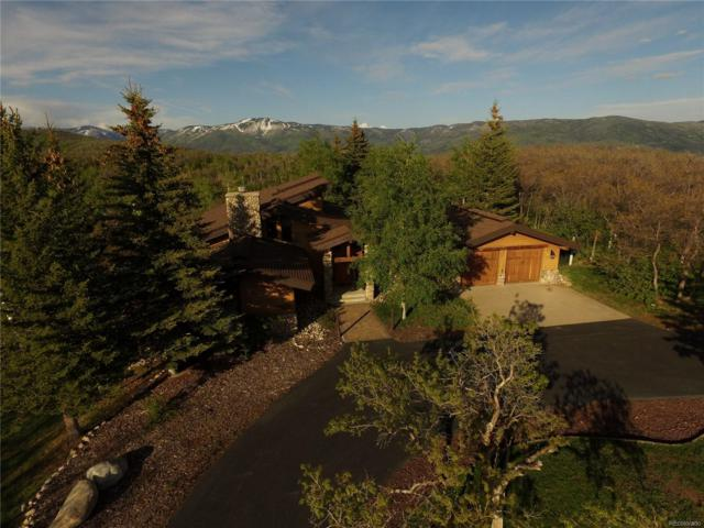 28800 Skyline Drive, Steamboat Springs, CO 80487 (#3323513) :: Bring Home Denver with Keller Williams Downtown Realty LLC