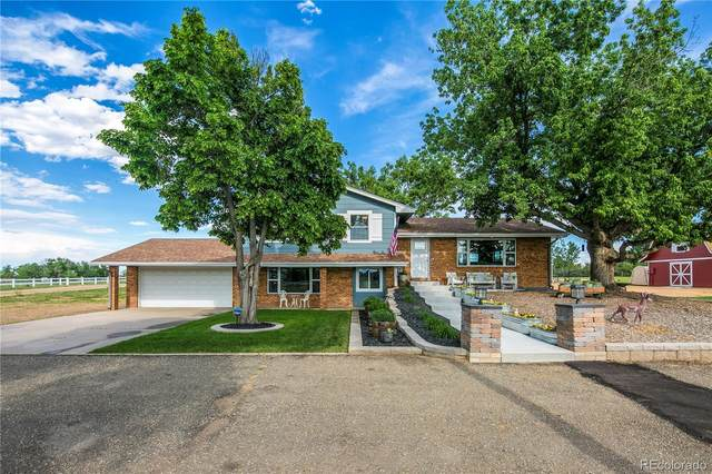 10230 County Road 15, Longmont, CO 80504 (#3323748) :: The Brokerage Group