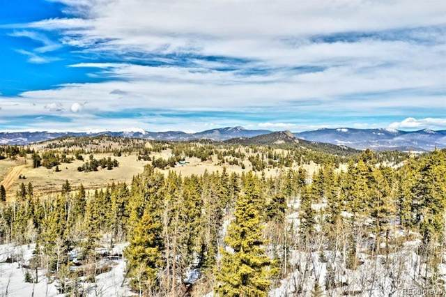1486 Chief Trail, Como, CO 80432 (MLS #3323922) :: 8z Real Estate
