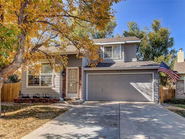 6259 Newton Court, Arvada, CO 80003 (MLS #3327931) :: Kittle Real Estate