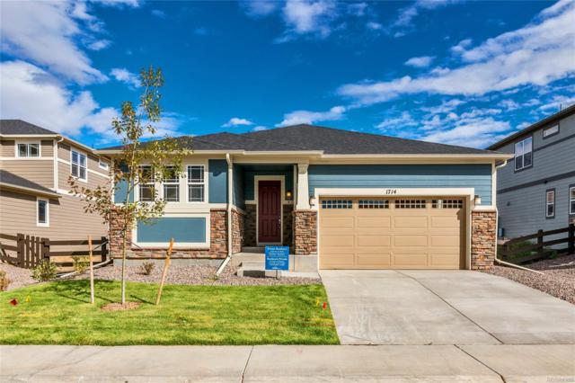 1714 Dusty Boot Drive, Lafayette, CO 80026 (MLS #3332267) :: 8z Real Estate