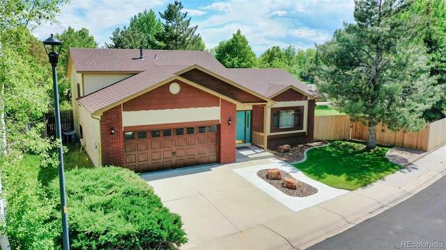 743 Grouse Circle, Fort Collins, CO 80524 (MLS #3332411) :: Bliss Realty Group