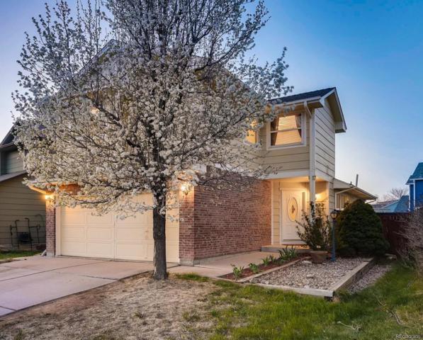 16877 Dandelion Way, Parker, CO 80134 (#3336470) :: Colorado Team Real Estate