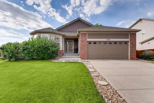 5890 E 114th Avenue, Thornton, CO 80233 (MLS #3338121) :: 8z Real Estate