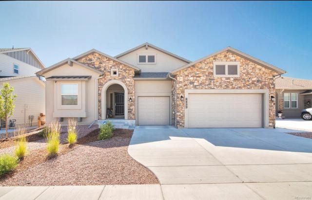 8439 Crooked Branch Lane, Colorado Springs, CO 80927 (MLS #3342456) :: Kittle Real Estate
