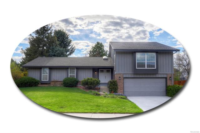 7233 S Harrison Way, Centennial, CO 80122 (#3343606) :: The DeGrood Team