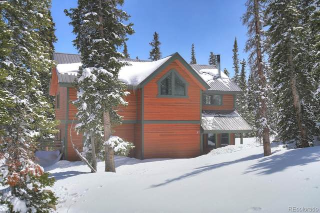 1561 Prunes Place, Fairplay, CO 80440 (#3346268) :: The Healey Group