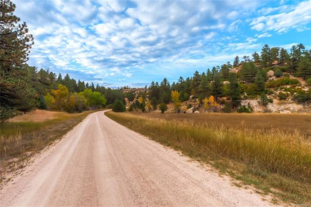6585 Lost Canyon Ranch Road, Castle Rock, CO 80104 (MLS #3347770) :: 8z Real Estate