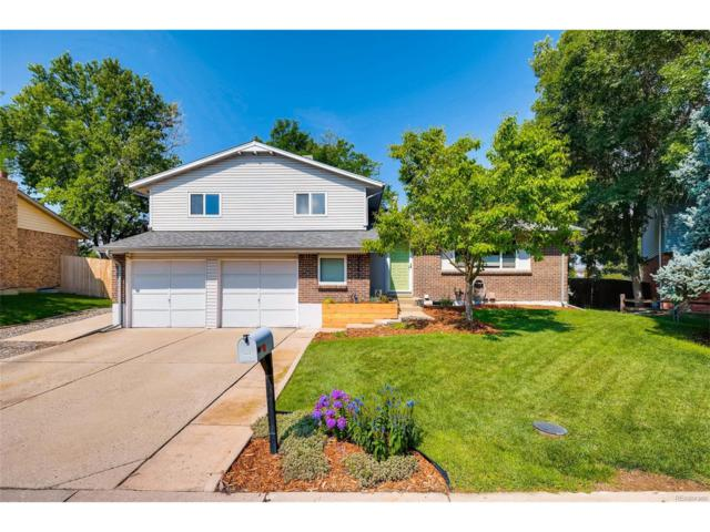 4449 S Field Court, Littleton, CO 80123 (MLS #3350044) :: 8z Real Estate