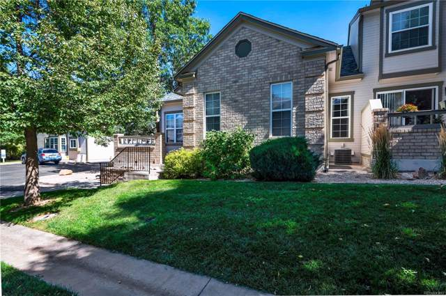 5990 Hitching Post View, Colorado Springs, CO 80923 (#3354897) :: The Heyl Group at Keller Williams