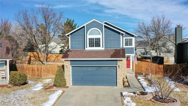 4059 E 131st Drive, Thornton, CO 80241 (#3355464) :: Mile High Luxury Real Estate
