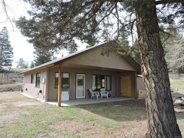 141 Mcnaughton Drive, Fort Garland, CO 81133 (#3356691) :: The Thayer Group