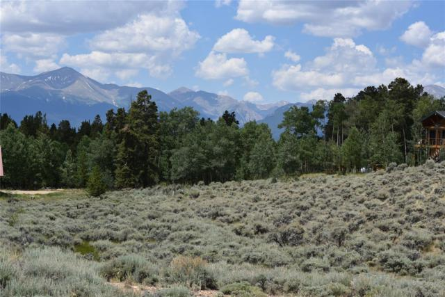 276 & 254 Antelope Road, Leadville, CO 80461 (#3360680) :: Structure CO Group