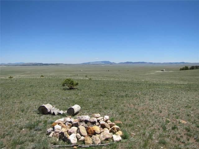 7493 Ranch Road, Hartsel, CO 80449 (#3361553) :: The DeGrood Team