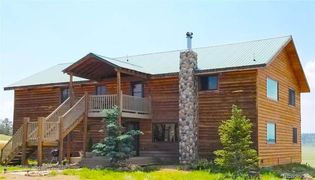 10570 County Road 53, Hartsel, CO 80449 (#3365487) :: Venterra Real Estate LLC