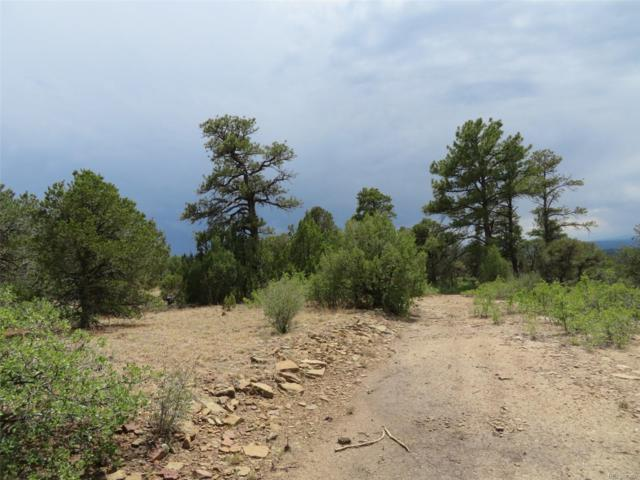 Lot M8 Fisher Peak Ranch, Trinidad, CO 81082 (#3368582) :: The Heyl Group at Keller Williams