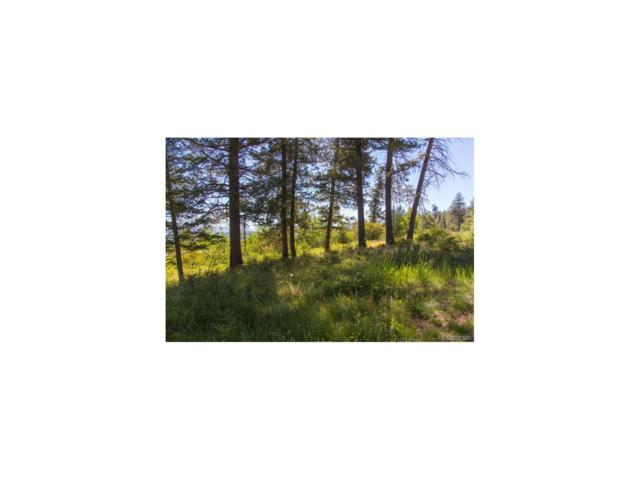 177 Red Draw, Edwards, CO 81632 (MLS #3369000) :: 8z Real Estate