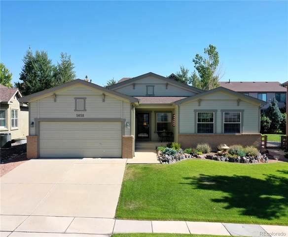 5658 Marshall Creek Drive, Colorado Springs, CO 80924 (MLS #3370475) :: 8z Real Estate