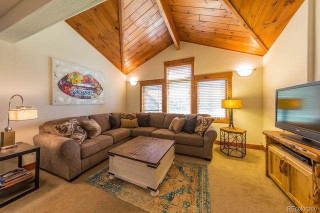 283 Cement Creek Road B, Crested Butte, CO 81224 (#3370582) :: The Colorado Foothills Team   Berkshire Hathaway Elevated Living Real Estate