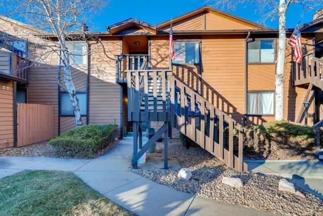 9513 W 89th Circle, Westminster, CO 80021 (#3374765) :: The City and Mountains Group