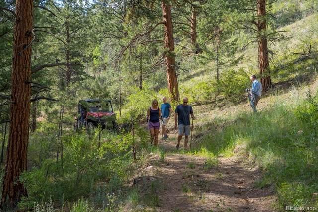 14433 Lot 1 Elk Creek Road, Pine, CO 80470 (#3377294) :: Wisdom Real Estate