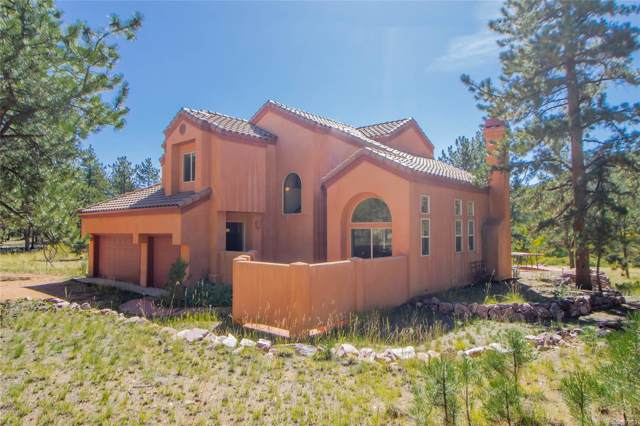 248 Pine Forest Road, Lake George, CO 80827 (#3378603) :: The DeGrood Team