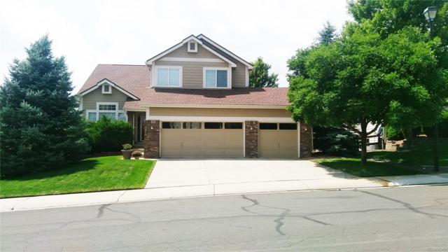 1214 Switch Grass Drive, Castle Rock, CO 80109 (#3379484) :: Bicker Realty