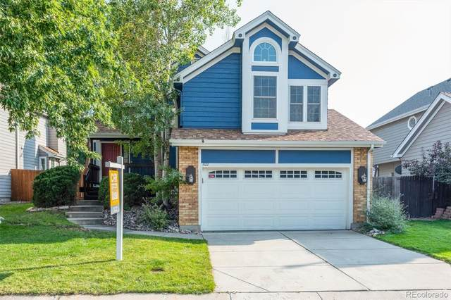 1122 S Flower Circle, Lakewood, CO 80232 (#3380629) :: The Dixon Group