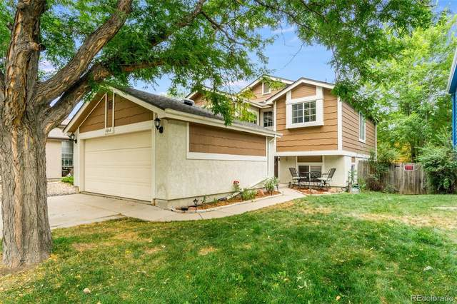 8058 Decatur Court, Westminster, CO 80031 (#3382359) :: The DeGrood Team
