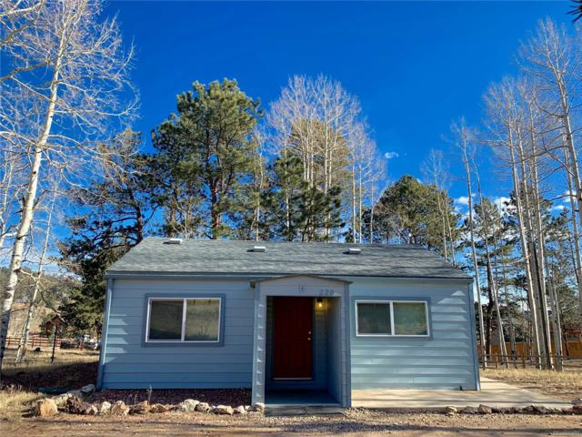 220 Burland Drive, Bailey, CO 80421 (#3383699) :: The Heyl Group at Keller Williams