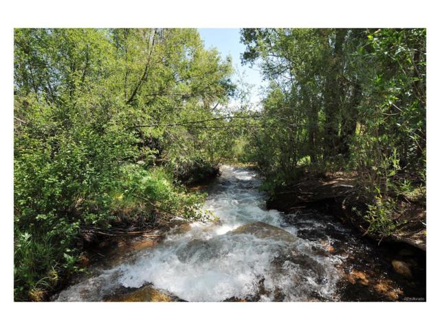 13355 County Road 261C, Nathrop, CO 81236 (MLS #3390431) :: 8z Real Estate