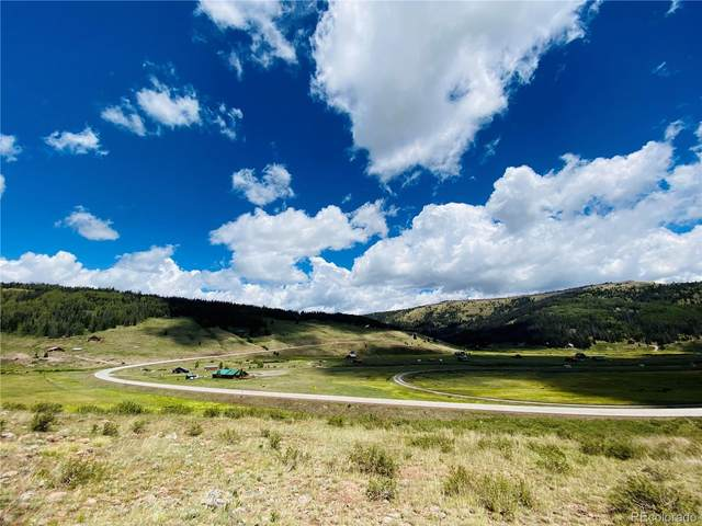 44 Hwy 17, Antonito, CO 81120 (MLS #3392179) :: 8z Real Estate