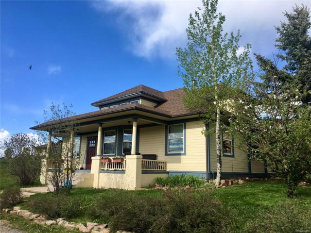 8150 Gray Fox Drive, Evergreen, CO 80439 (#3403525) :: Structure CO Group