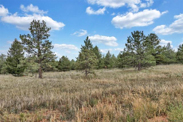 Lot 12 Forest View Road, Monument, CO 80132 (#3412420) :: The HomeSmiths Team - Keller Williams