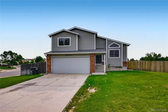 4695 Cade Court, Colorado Springs, CO 80922 (#3414839) :: Finch & Gable Real Estate Co.