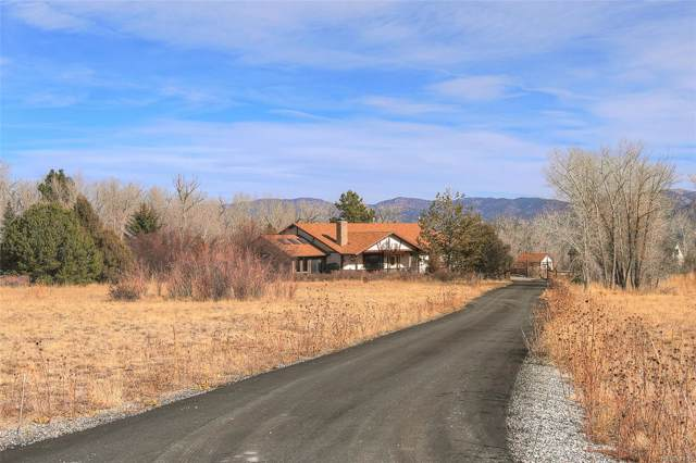 13033 County Road 261D, Nathrop, CO 81236 (#3415565) :: The DeGrood Team