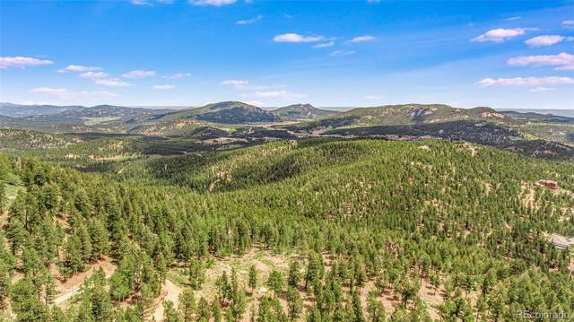 29202 Marys Drive, Conifer, CO 80433 (MLS #3415799) :: 8z Real Estate