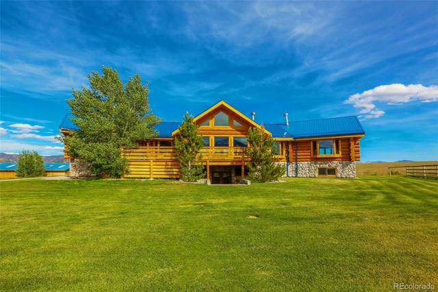 13877 W County Road 270, Nathrop, CO 81236 (#3419157) :: Wisdom Real Estate