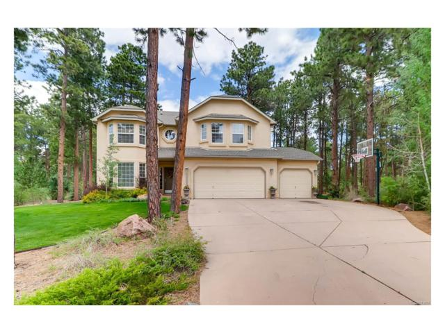 15835 Woodmeadow Court, Colorado Springs, CO 80921 (MLS #3419988) :: 8z Real Estate