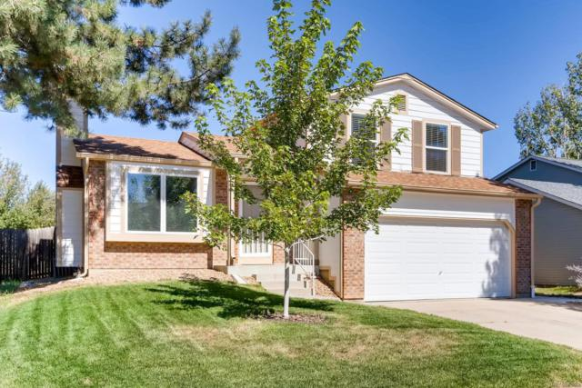 283 Dahlia Drive, Louisville, CO 80027 (#3423905) :: The Heyl Group at Keller Williams