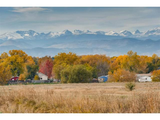 341 Dusk Place, Erie, CO 80516 (MLS #3424096) :: 8z Real Estate