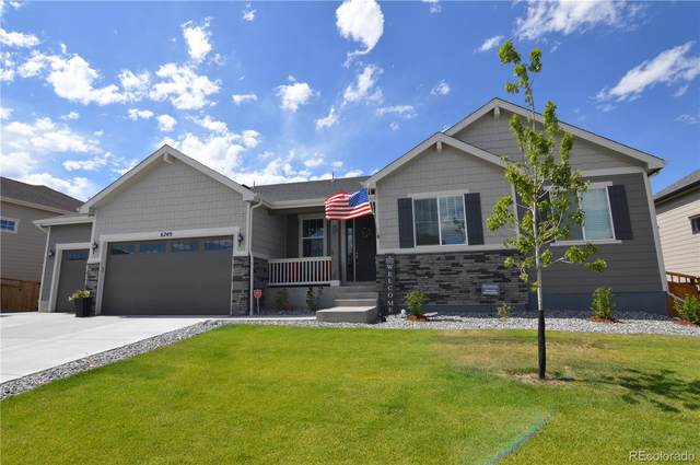 6749 Mentha Drive, Castle Rock, CO 80108 (#3427168) :: The DeGrood Team