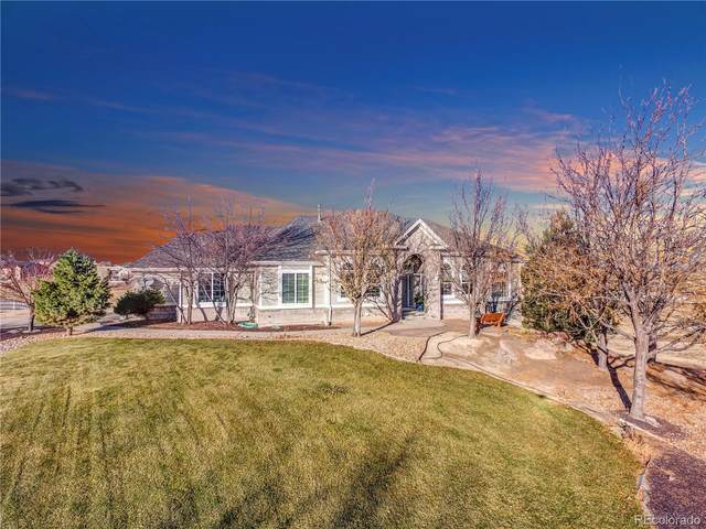 10081 E 145th Avenue, Brighton, CO 80602 (MLS #3429663) :: 8z Real Estate