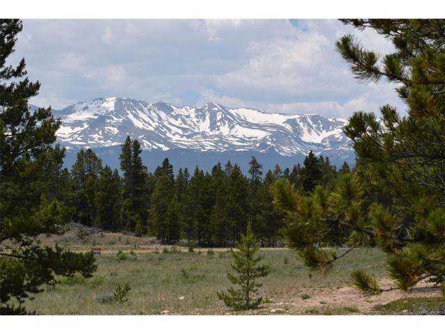 301 Snowshoe Rabbit Drive, Leadville, CO 80461 (#3431871) :: Wisdom Real Estate